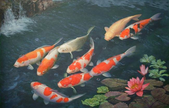 3 loài cá cảnh bạn nên nuôi trong nhà